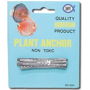 Plant Anchor (lead) Card/12