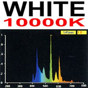 "Aquafx Tube 10000k  36"""