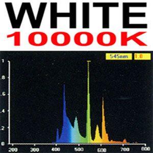 "Aquafx Tube 10000k  48"""