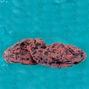 Katima Lava Rock (177x88x45mm)