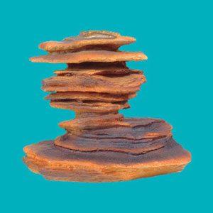 Pagoda Stone Lg1 (210x140x165mm)