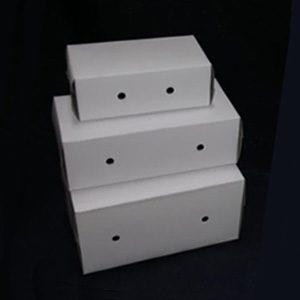 """Paper Bird/pet Carrier  91/4"""" X 51/2"""" X 43/4"""""""