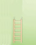 Wooden Ladder 6 rung 20mm Dia.
