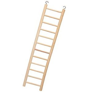 Wooden Ladder 12 rung 20mm Dia.