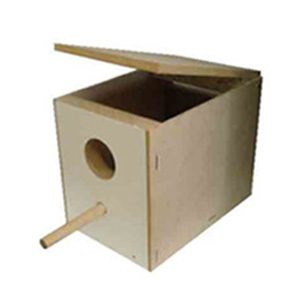Lovebird Breeding Box