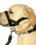 Kumfi Dog Head Halter Small