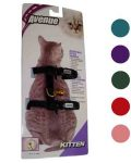 Kitten Harness Nylon / Card - Lt. Blue