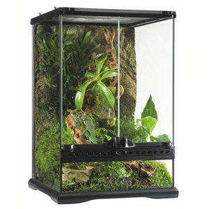"Exo Terra All Glass Terrarium - 12 X 12 X 18"""