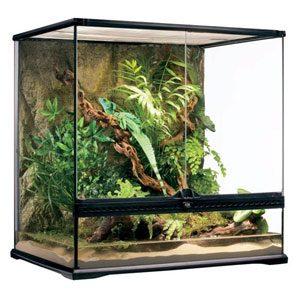 "Exo Terra All Glass Terrarium - 24 X 18 X 24"""