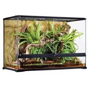 "Exo Terra All Glass Terrarium - 36 X 18 X 24"""