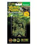 Exo Terra Floating Plant - Fanwort