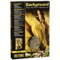 "Rock Terrarium Background - 12 X 18"""