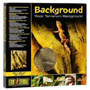 "Rock Terrarium Background - 18 X 24"""