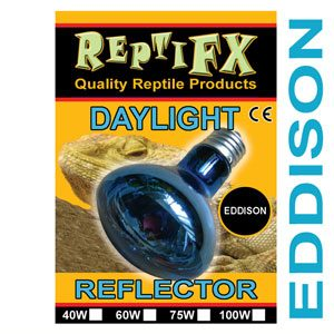 ReptiFX Daylight Reflector 75w