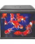 Nano Aquarium 30L Includes LED Color Enhancer light and Filter