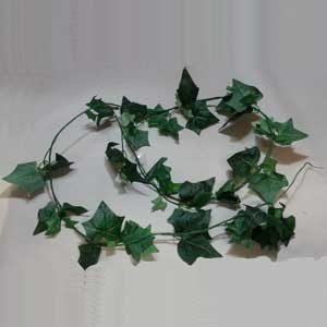"""Terrarium Plant 75"""" Green"""