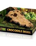 Exo Terra Crocodile Skull - Medium